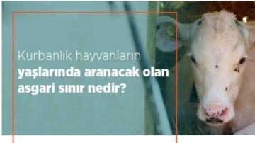 Kurbanlık hayvanların yaşlarında aranacak olan asgari sınır nedir?