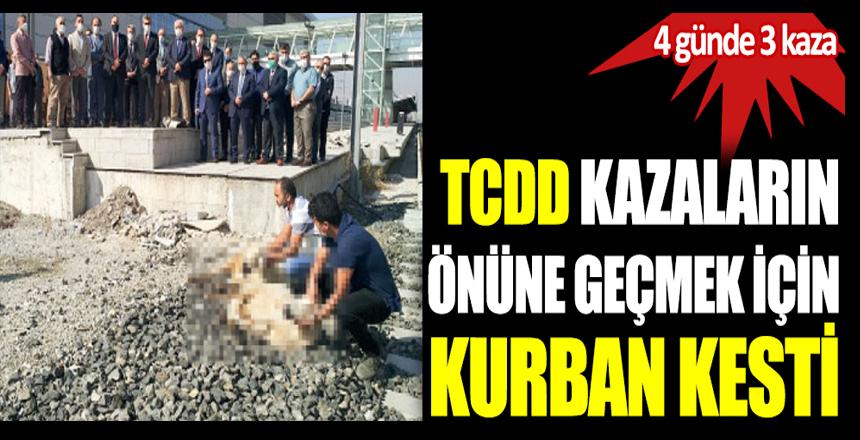 TCDD kazaların önüne geçmek için kurban kesti. 4 günde 3 kaza yaptı