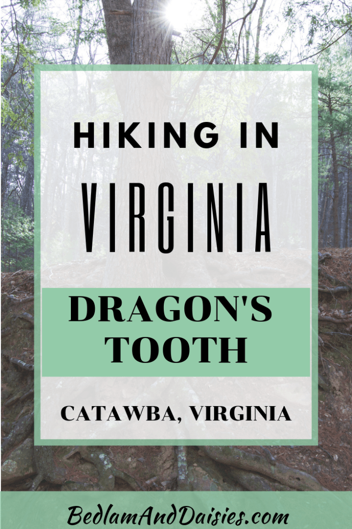 Hiking in Virginia? Here's How to Hike Dragon's Tooth