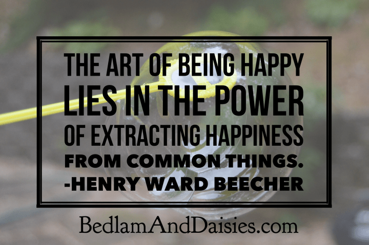 The art of being happy lies in the power of extracting happiness from common things- Henry Ward Beecher