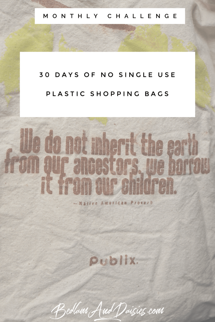 30 Days of No Single Use Plastic Shopping Bags monthly challenge