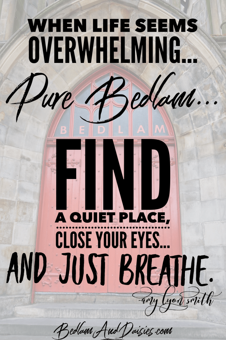 When life seems overwhelming...pure bedlam...find a quiet place, close your eyes...and just breathe. -Amy Lyon Smith quote