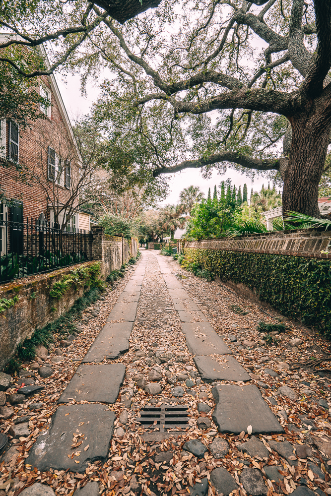 Looking for things to do in Charleston, South Carolina? From Folly Beach and more. Check out these 11 things that you'll want to do during a trip to Charleston.