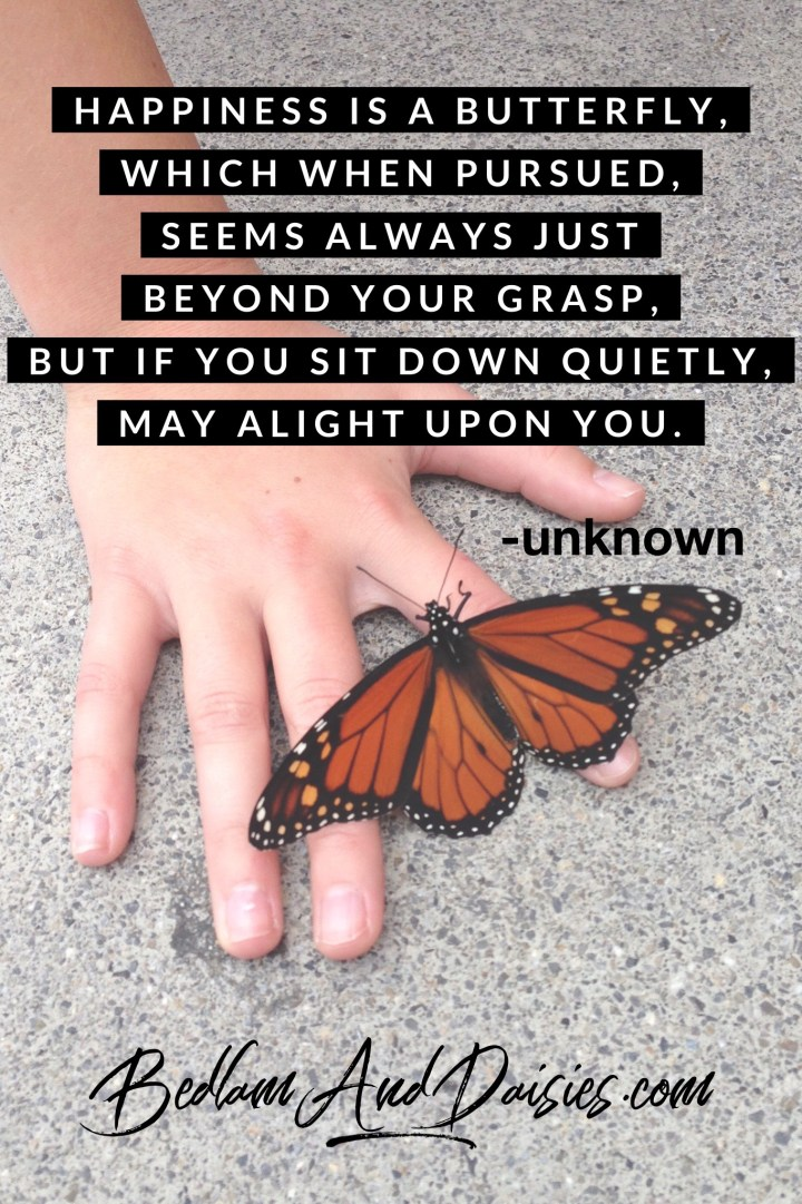 Happiness is a butterfly, which when pursued, seems always just beyond your grasp, but if you sit down quietly, may alight upon you. -unknown.  Check out my website for even more inspirational and motivational quotes.