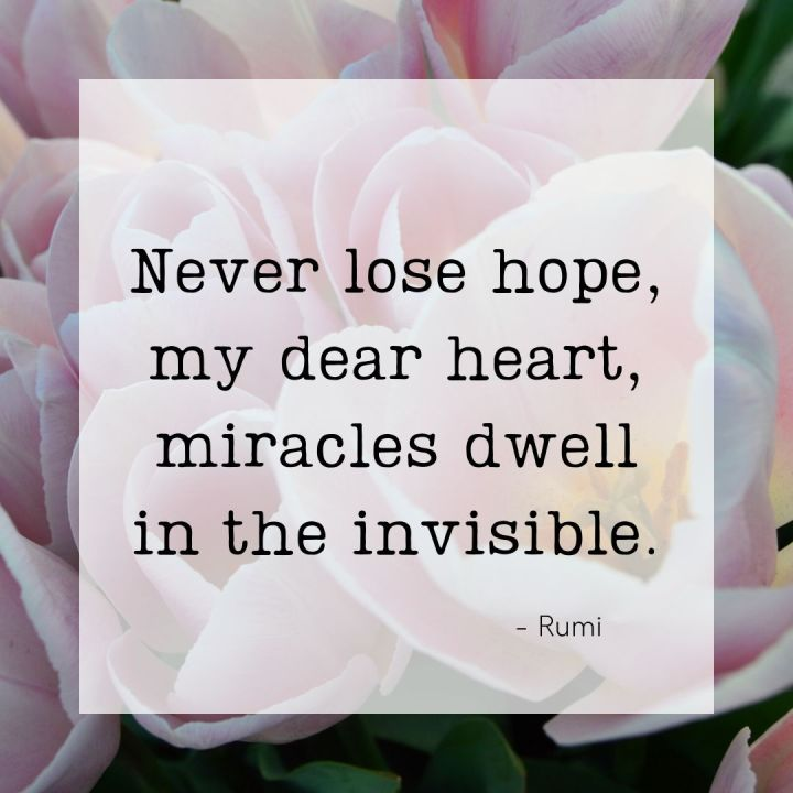 Never lose hope, my dear heart, miracles dwell in the invisible. - Rumi