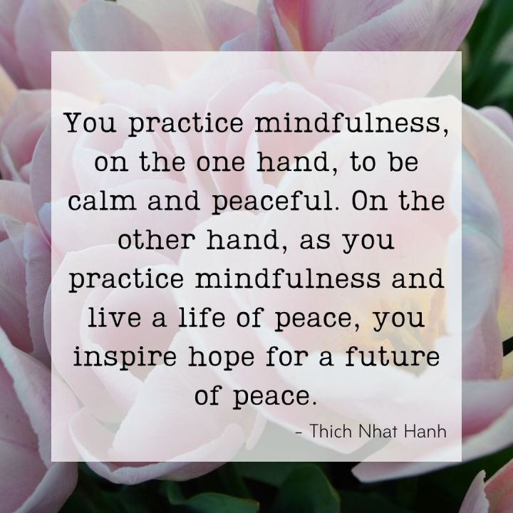 You practice mindfulness on the one hand, to be calm and peaceful. On the other hand, as you practice mindfulness and live a life of peace, you inspire hope for a future of peace. -Thich Nhat Hanh