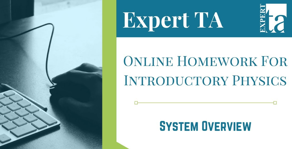 Expert TA review