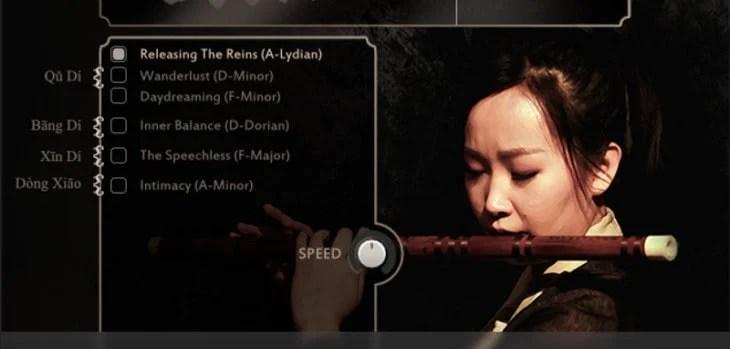FREE Ethnic Flute Phrases by Sonuscore