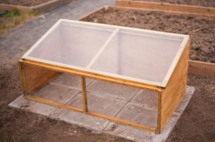 greenhouse cold frame