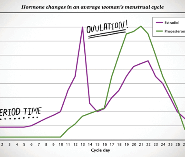 What Are Typical Female Hormone Levels