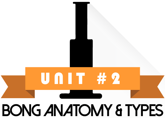 Unit 2 of Bongs, Bubblers and Beyond- Bong Anatomy & Types