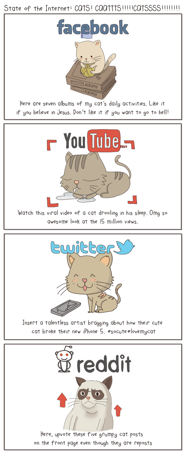 The State of Internet (Social Media), Explained With Cats [Pics]