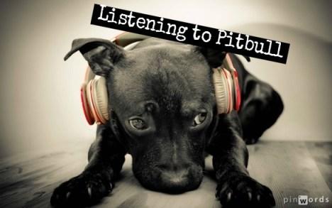 Listening to Pitbull  on earphones