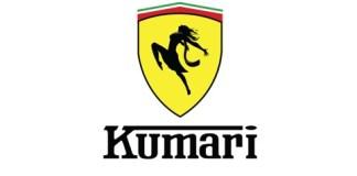 Ferrari Desi Logo