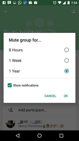 WhatsApp Tricks mute group notifications