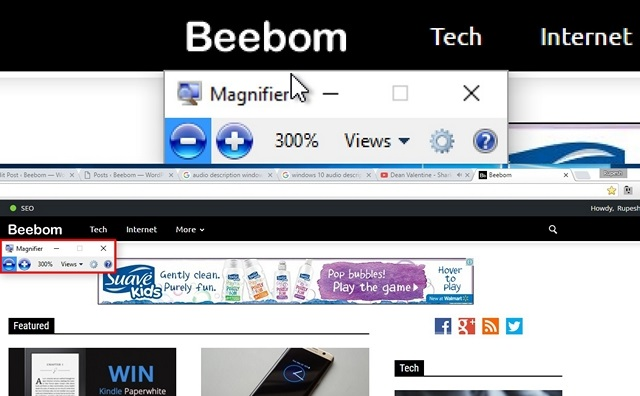 Windows 10 Magnifier feature