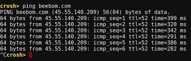Chrome OS Crosh ping command