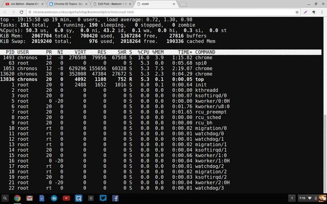 Chrome OS Crosh top task manager command
