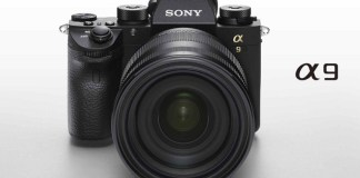12 Best Mirrorless Cameras You Can Buy in 2017