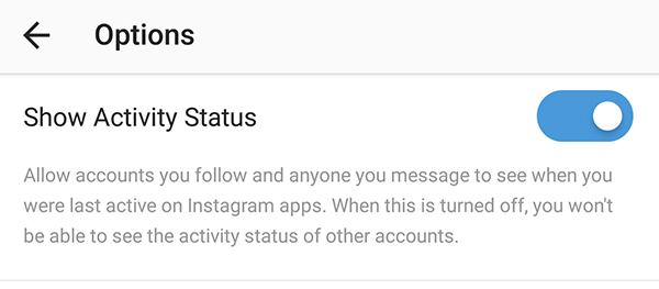 Instagram Now Shows Activity Status for Users in Direct Messages