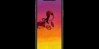 10 Best iPhone Xs Cases and Covers That You Can Buy