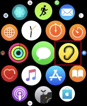Запустите приложение Noise на Apple Watch