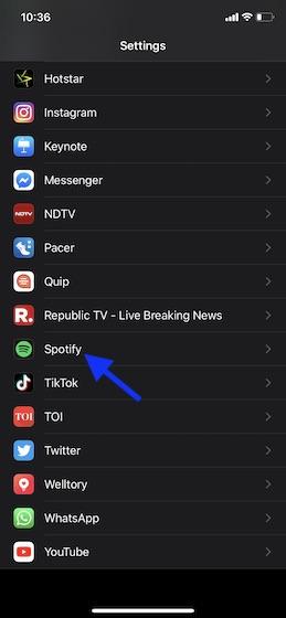 Toca Spotify