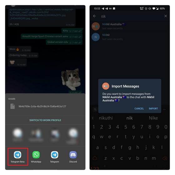 выберите получателя импорта в Telegram