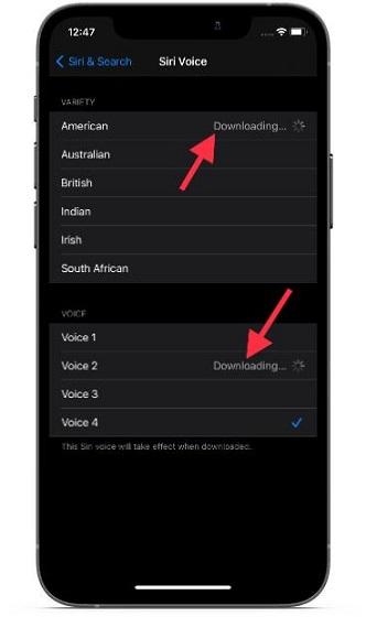 descargar nueva Siri Voice en iOS y iPadOS