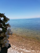 lake-shkodra