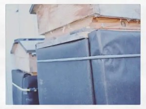 Overwintering a Beecentric Hive. Wrapped in four insulated panels and held to the side of the beehive with bungee cords.