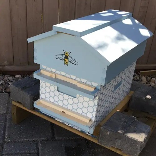Painted Beecentric Hive in an Edmonton Backyard