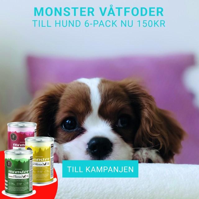 Monster Hundmat 2 kg nu 99 kr