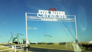 five rivers jbs coronado feeders dalhart texas feedlot