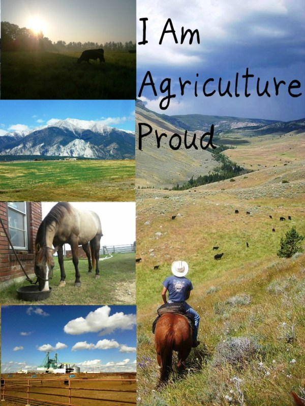 My Favorite Agriculture Blogs