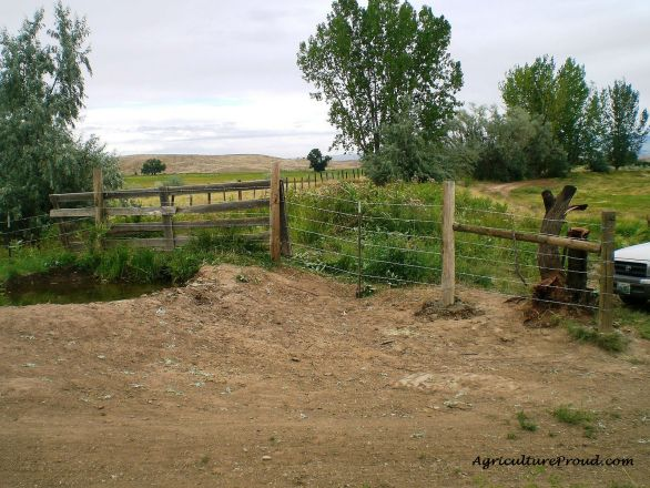 water crossing pasture fence