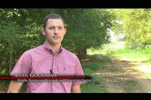 I am Angus - Ryan Goodman