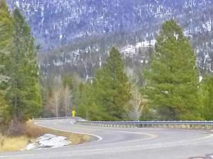 Mountain Road Montana Helena National Forest Flesher Pass
