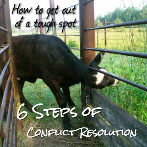 6 Steps of Conflict Resolution