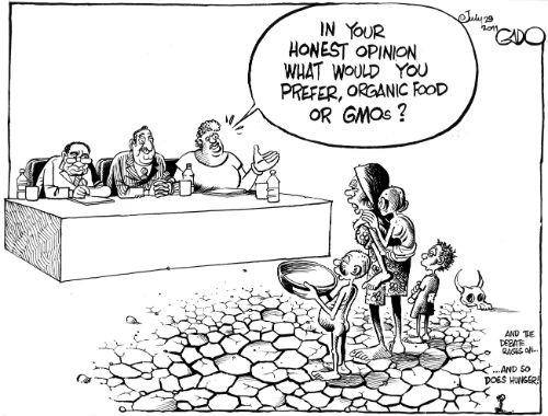 gmo feed hungry people