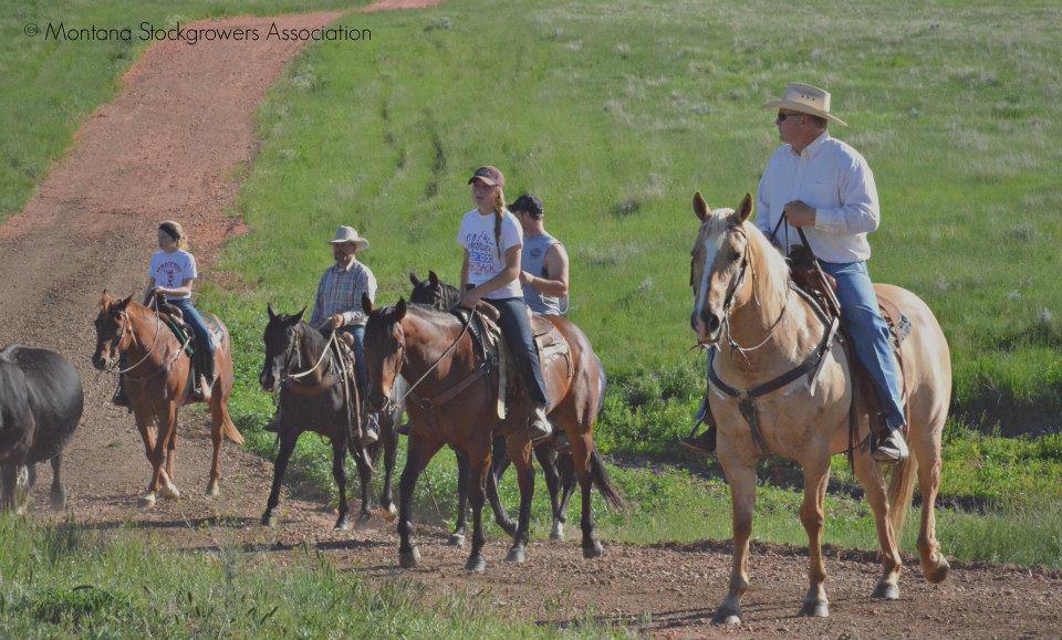 Mentoring Farm Ranch Employees