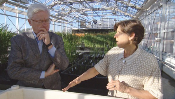 CBS Sunday Morning: Is GMO Fear Justified?