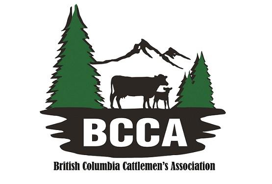 BCCA Logo & Name_resized for BCAC website