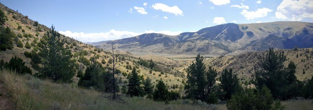 July Open Land Cardwell Montana Mountains