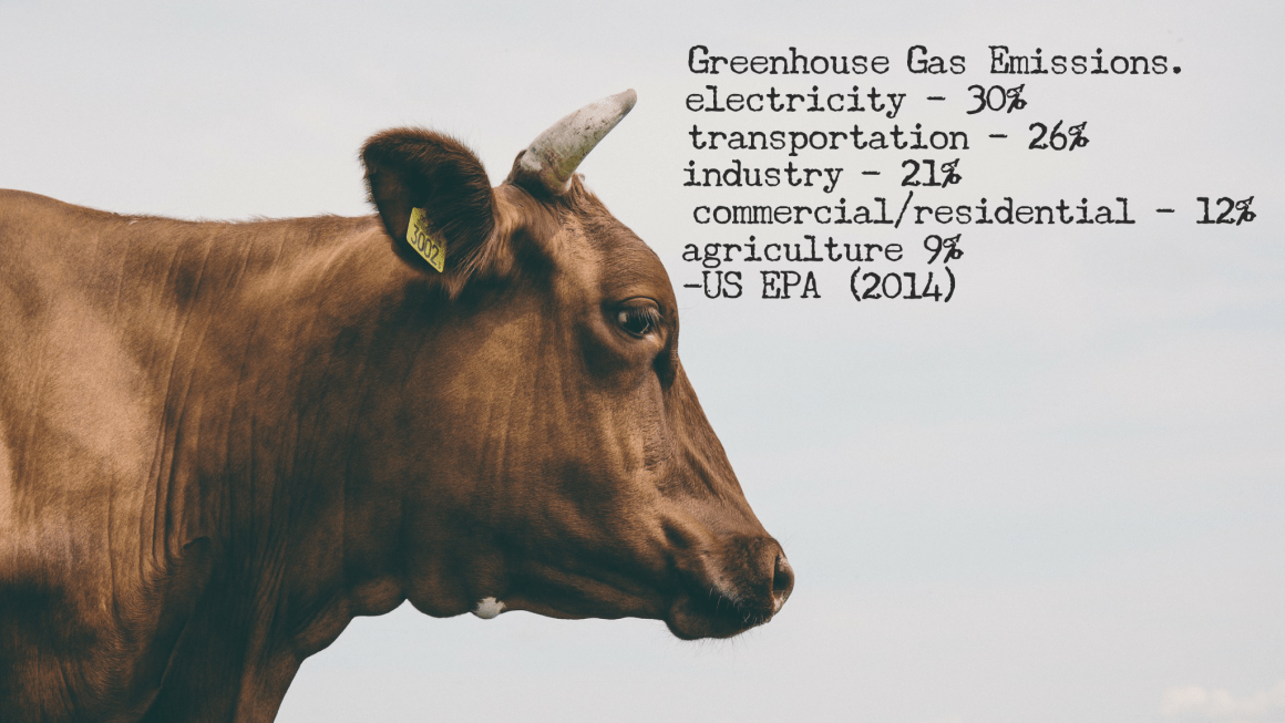 Livestock's Long Shadow and Greenhouse Gas Emissions