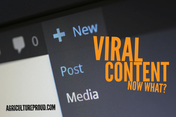 What you do after is more important than creating viral content