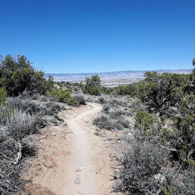 Desert Rats Trail Running Festival 50k course