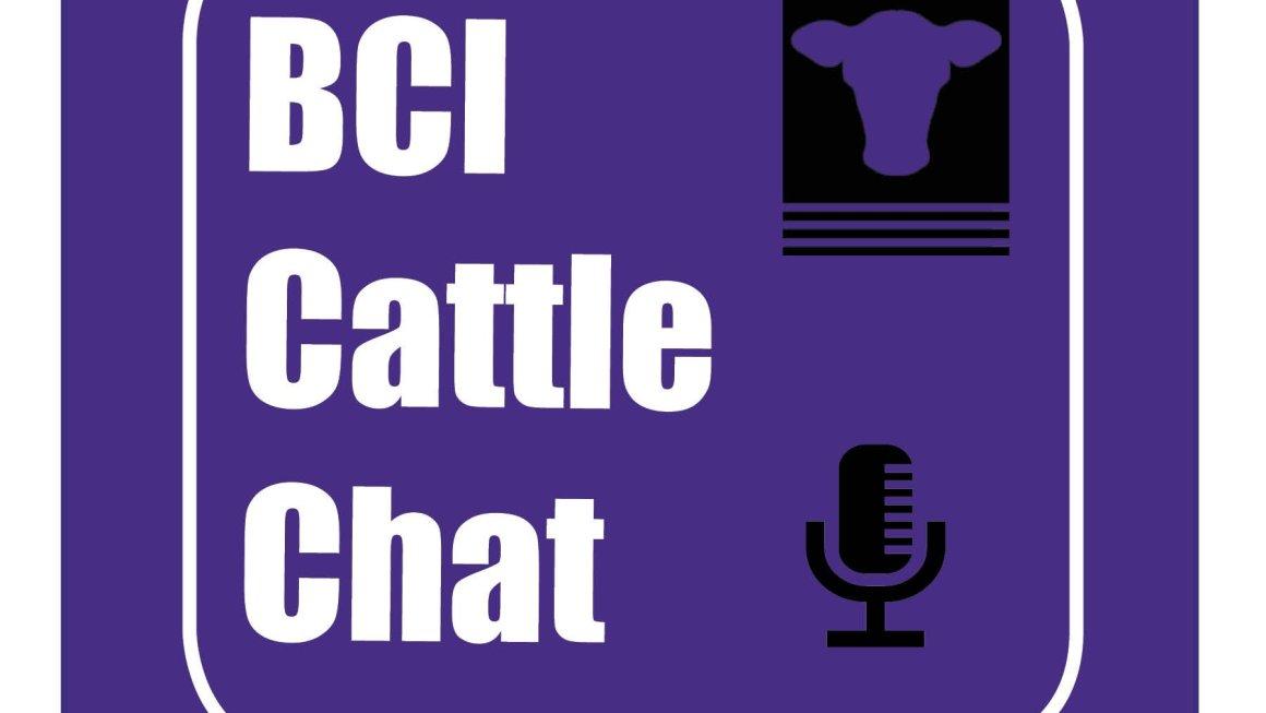 Beef Cattle Institute