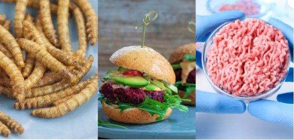 Research Applies to Advocacy on Plant-Based Proteins vs Beef