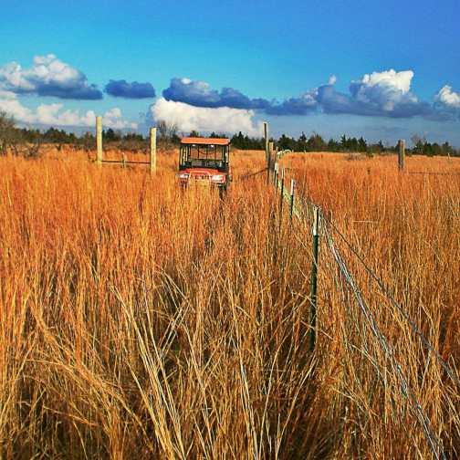 oklahoma livestock fencing project